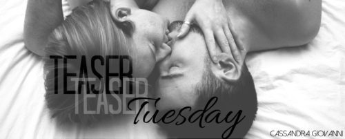 1-teaser-tuesday-header