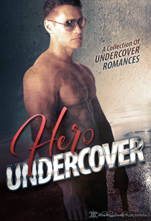 Hero Undercover: 25 Breathtaking Bad Boys (Boxset)